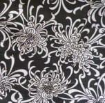 Black-white chrys